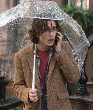 Gatsby A Rainy Day in New York Timothée Chalamet Tweed Blazer